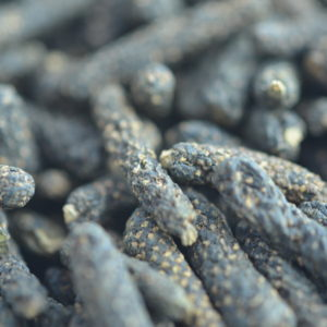 Langer Pfeffer 1-2 Cm (Schokoladenpfeffer) 35g